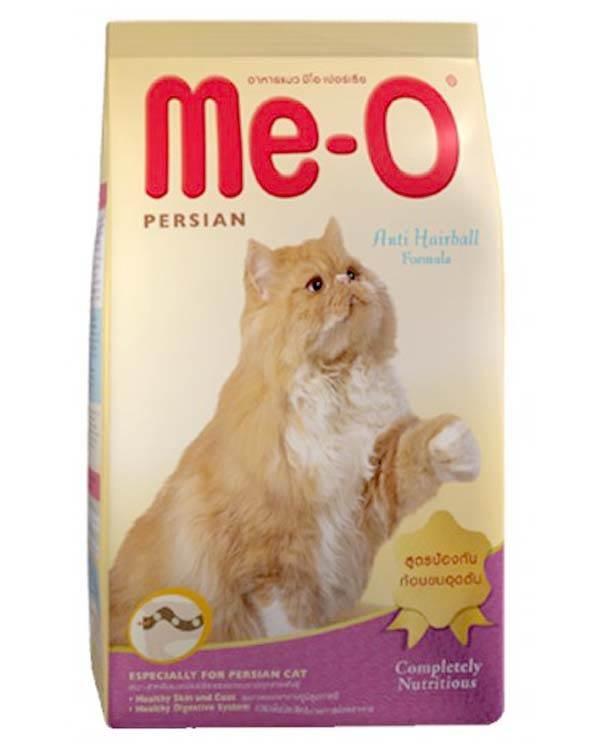 Persian cat food in india